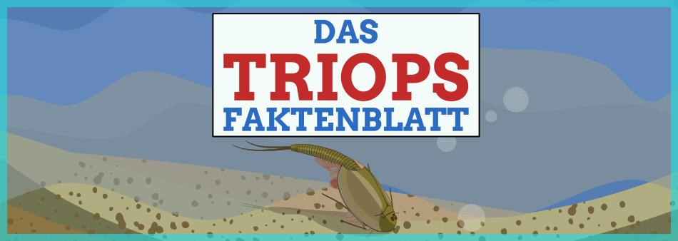 Triops Faktenblatt